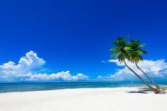 Toile Caraïbes 60x90cm