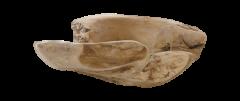 Fruitschaal large - ø38-45 cm - blank - teak