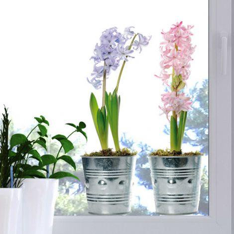 Raamsticker Vases