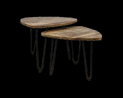 Set van 2 salontafels Dexter – mangohout/ijzer