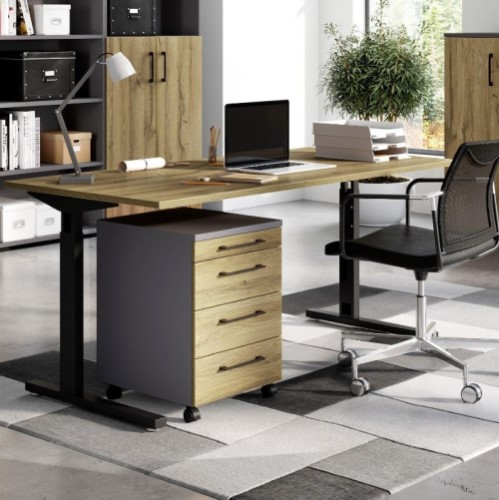 verstelbaar bureau